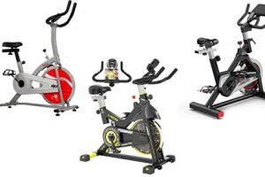 Best Spin Bikes for Short People